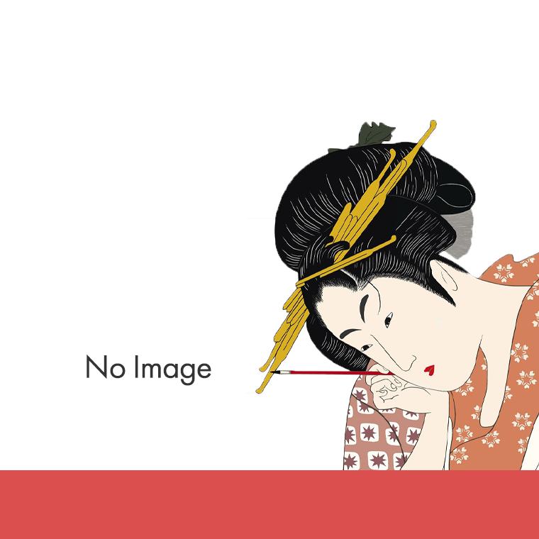 锦绣未央(日題:王女未央-BIOU-)